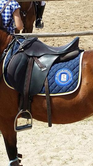silla montar caballos Las Agrupadas